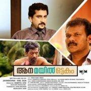 Aana Mayil Ottakam Malayalam Film Recent Gallery 9549