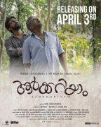 Malayalam Film Aarkkariyam Mar 2021 Stills 8408