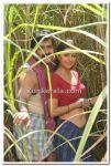 Mohanlal And Bhumika Chawla Photo 4