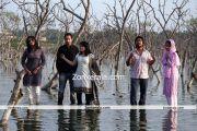 Chappa Kurishu New Pictures7