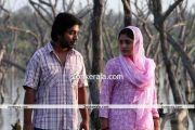 Chappa Kurishu New Pictures8
