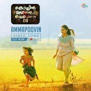 2019 Images Malayalam Cinema Cochin Shadhi At Chennai 03 4754