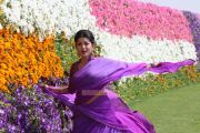 Malayalam Movie Ladies And Gentlemen Photos 1059