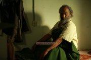Lord Livingstone 7000 Kandi New Image 4520