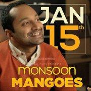Monsoon Mangoes