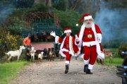 Dileep In My Santa Film 854