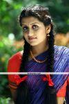Sarayu In Nayika Movie