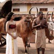Pathonpatham Noottandu Malayalam Movie 2021 Pic 5086