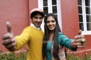 Malayalam Movie Pattam Pole 8672