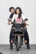 Sreeshanth Nikki Galrani Movie Team 5 Film Still 485