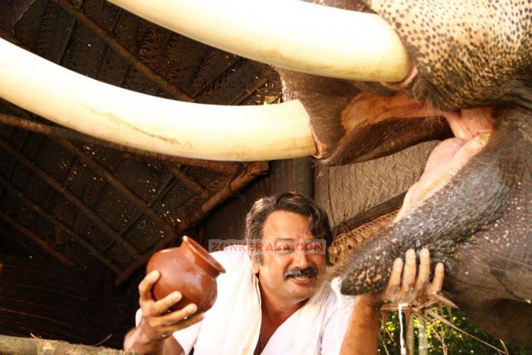Thiruvambadi Thamban Photos 758