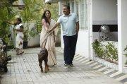 Stills Varane Avashyamundu Malayalam Movie 9460