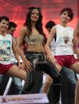 Parul Yadav Perfomance At 61st Idea Filmfare South Awards 2013 27