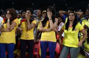 Ccl 4 Kerala Strikers Vs Chennai Rhinos Match 5475