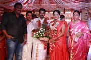 Director Vijay And Amala Paul Wedding 7085